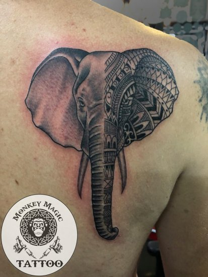 Elephant with Pattern